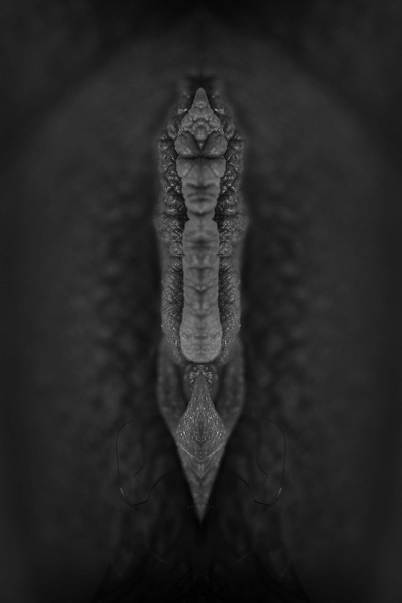 Totem N°14 - Photographie Paul-Louis LEGER, Photographe, Marseille